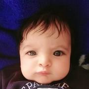 shaaban_ismaeil's Profile Photo