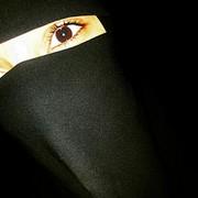 Sabankh's Profile Photo
