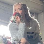 grandesrose's Profile Photo