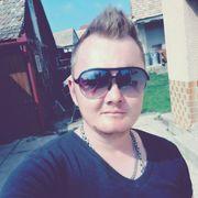 Rob244's Profile Photo