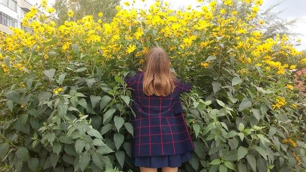 dasha_hud's Profile Photo