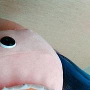 id176012327's Profile Photo
