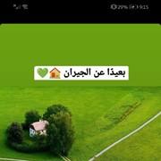 maizayed5's Profile Photo