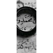 MahamedGamal680's Profile Photo