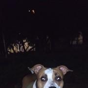 Psina_23's Profile Photo