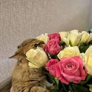oksana291995's Profile Photo