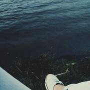 white666fox's Profile Photo
