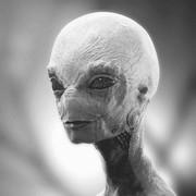 YouTuchMyTalala's Profile Photo
