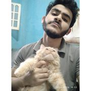 AhmedRamadan567's Profile Photo