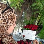 rama_rez's Profile Photo