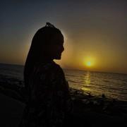 Nourashraf12's Profile Photo