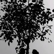 nada_beder's Profile Photo