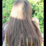 rosetulip5's Profile Photo