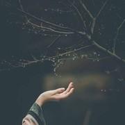 Asmaa_elabasirey's Profile Photo