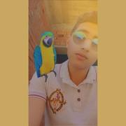ahmedbashar4's Profile Photo
