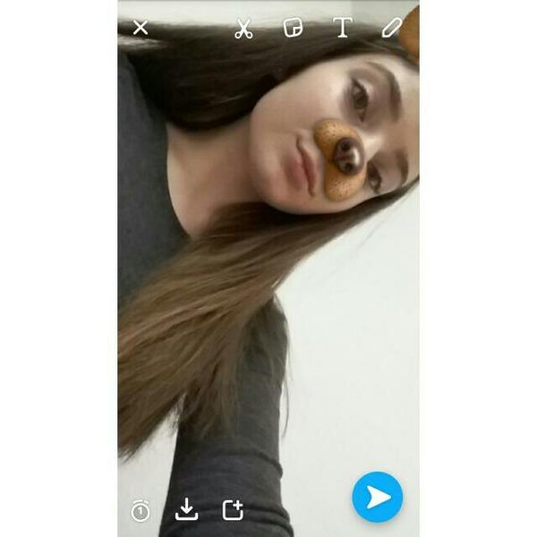 ayloxe's Profile Photo