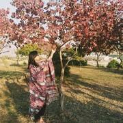 komiiiHA's Profile Photo