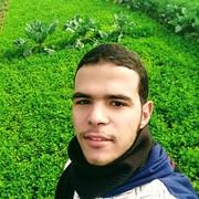 ahmed745elsayed's Profile Photo