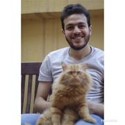 Mohamedsoliman10's Profile Photo