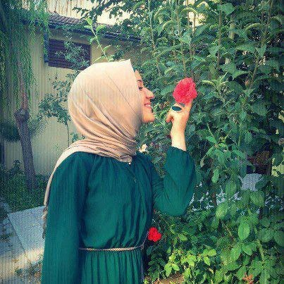 alaasentawy's Profile Photo