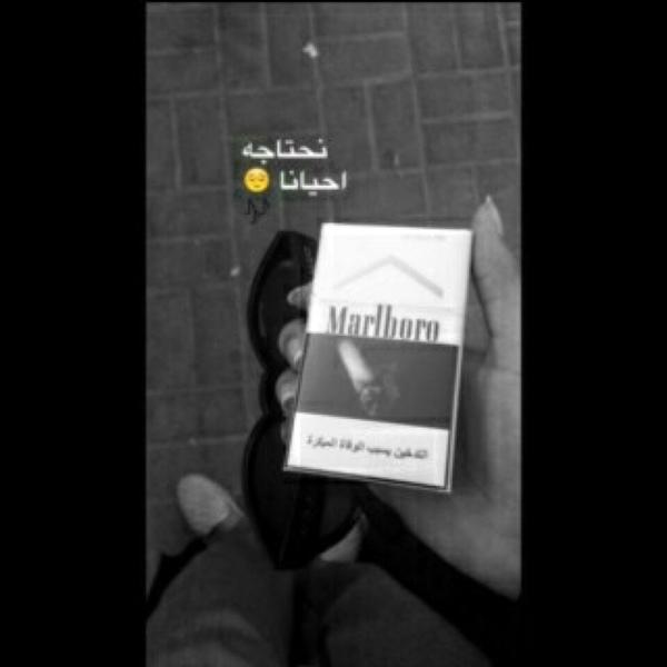 alrashdi_187's Profile Photo