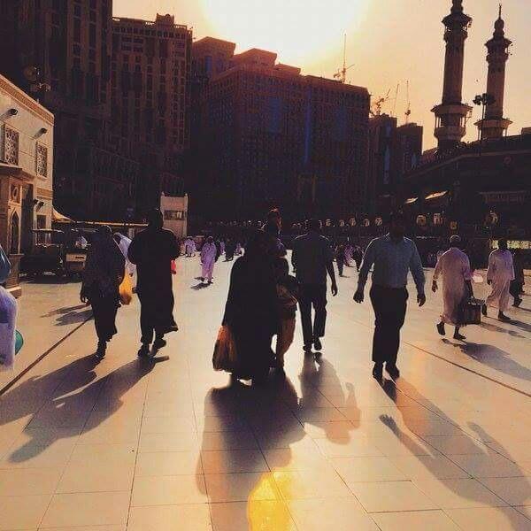MASJED_ALRAAOF's Profile Photo