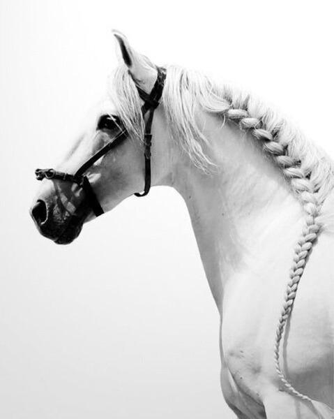 nooraha_22's Profile Photo