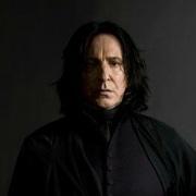 SeverusRogue's Profile Photo