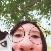 Sintra_korp's Profile Photo