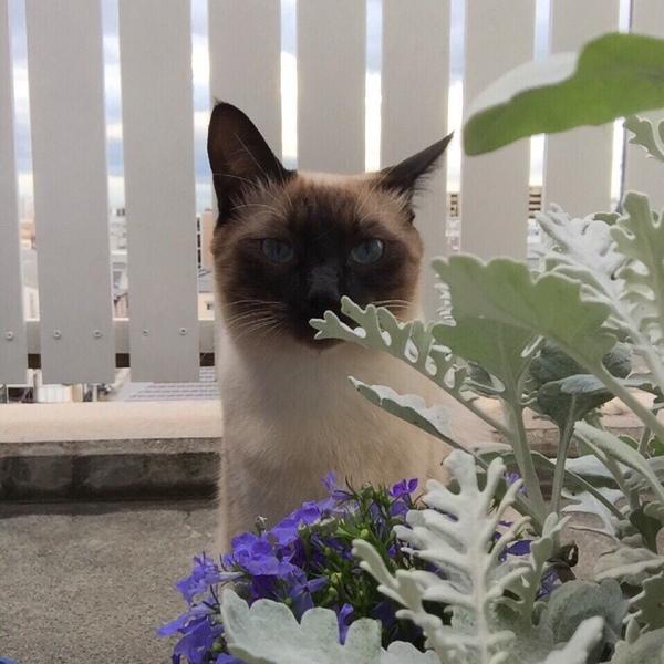 mashka_04's Profile Photo