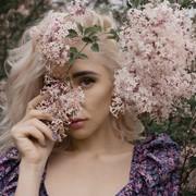 the_desire_to_bloom's Profile Photo