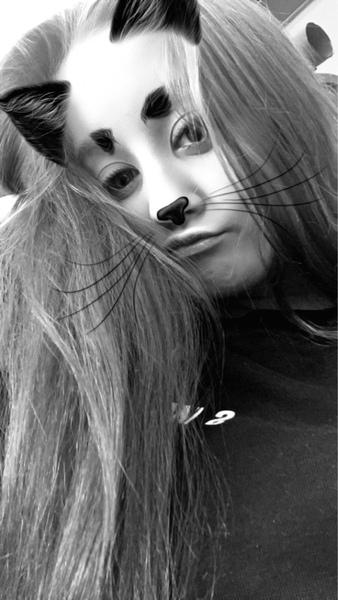 wysoolek's Profile Photo