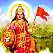 harihararya's Profile Photo