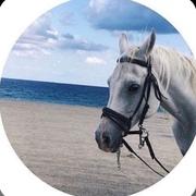 zx_nk's Profile Photo