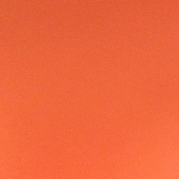 alisaa_gee's Profile Photo