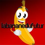 labananedufutur's Profile Photo