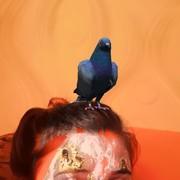 Nastya_Morsina's Profile Photo