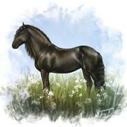 Grey_Richard's Profile Photo