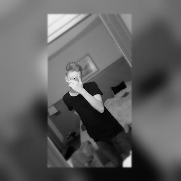 niklasb_'s Profile Photo