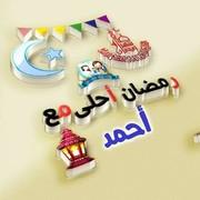 AhmedAli20255999's Profile Photo
