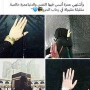 israa9794's Profile Photo