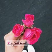 aseel_eashah's Profile Photo