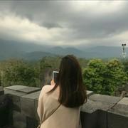 cynthiavidya's Profile Photo