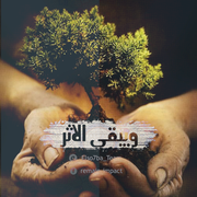 Elso7ba_Team's Profile Photo