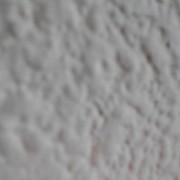 tipadeincognito's Profile Photo