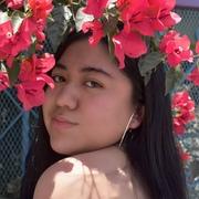 Xchapis's Profile Photo