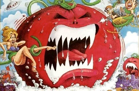 ketchup_Ap's Profile Photo