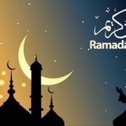rid_imad's Profile Photo
