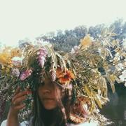 Forest_Sasha's Profile Photo