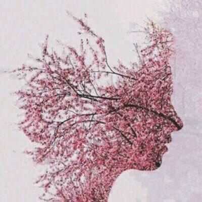 hananaljehani's Profile Photo